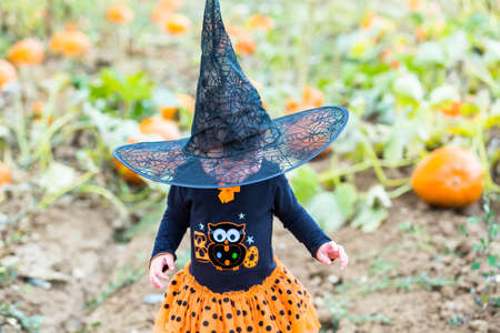 hallooween: Toddler in Hallooween costume playing at the pumpkin patch.