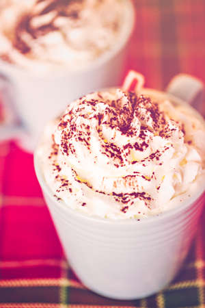 hot drink: Hot chocolate garnished with whipped cream and cocoa powder.