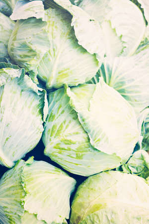 Fresh pile of cabbage at the local farmers  market. Imagens