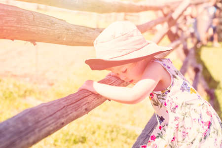 split rail: Toddler playing on the farm in the summer.