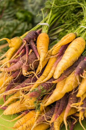 etymology: Fresh organic produce at the local farmers market.