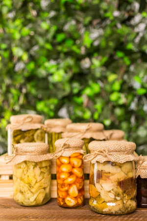 fungi: Homemade canned organic vegetables in glass jars.