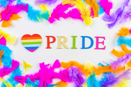 transgender gay: Rainbow Gay Pride sign on a white background.