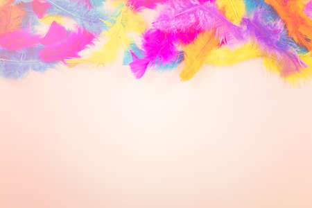 Rainbow Gay Pride feathers on a white background. Stock Photo