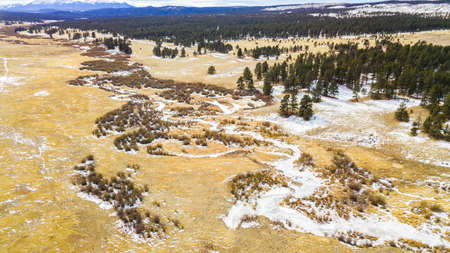 landforms: Aerial view of Pikes National Forest in the Winter.