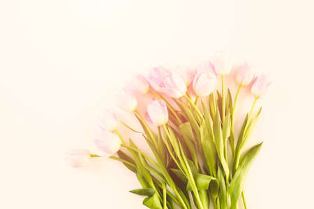 Bouquet of pink tulips on a white background. Imagens - 73425648