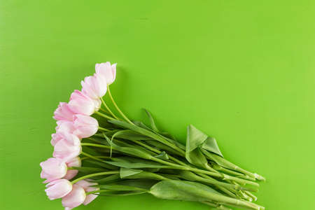 Bouquet of pink tulips on a green background. Banco de Imagens