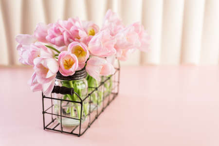 Light pink tulips on a pink background. Stock Photo