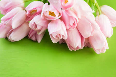 Light pink tulips on a green background. Imagens - 73425329