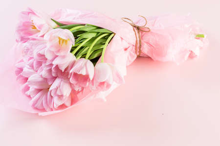 Light pink tulips on a pink background. Imagens