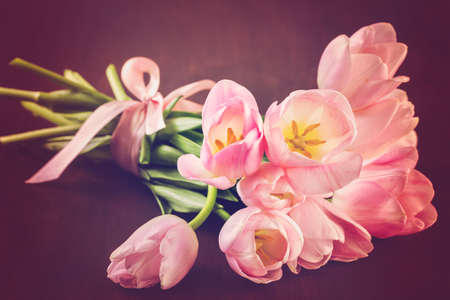 Light pink tulips on a wood background.