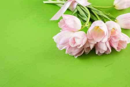 Light pink tulips on a green background. Imagens