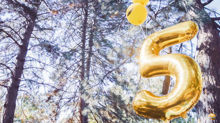 Number five golden balloon at little birthday party in urban park.