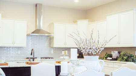 Modern kitchen in luxury house. Banque d'images - 113759944