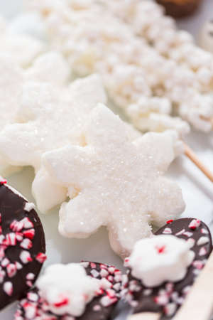 Close up view. Variety of marshmallow toppings with peppermint and chocolate for hot chocolate and cocoa drinks.