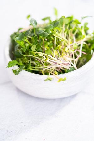 Freshly harvested radish microgreens in a bowl. Reklamní fotografie