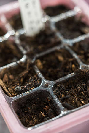 Planting seeds into seed starter tray for an indoor garden.