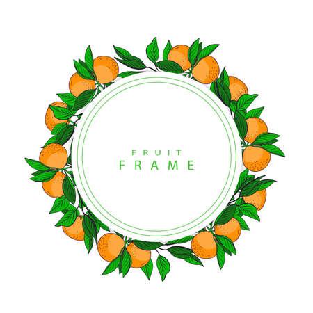 Fruit frame. Frame from mandarins. Healthy frame.