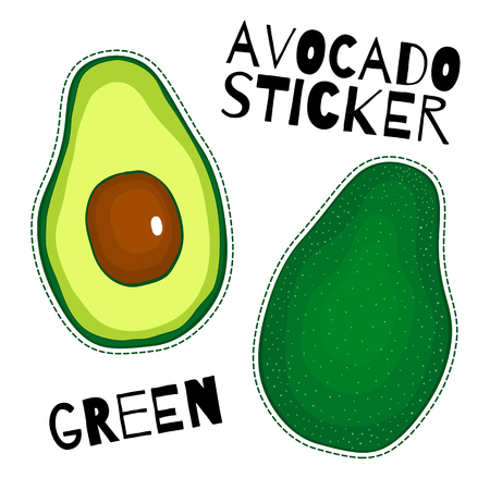 Set of vector fruit avocado on the white background green