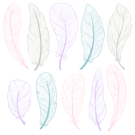 The different feathers are painted on a white background. Painted in delicate colors. Hand draw set.