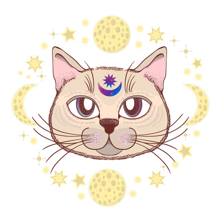 Vector with a cat, moon, stars. Magical and fairy. Suitable for postcards, printing, posters, textiles Cartoon style