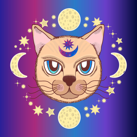 Vector pattern with a cat, moon, stars. Magical and fairy. Suitable for postcards, printing, posters, textiles Cartoon style Illustration