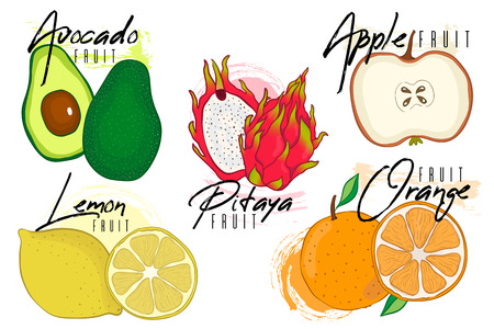 Set vector of colorful isolated cartoon vitamin fruit icons:apple,lemon, pitaya, avocado, orange, lemon . Vector illustration, isolated on white. Hand drawn