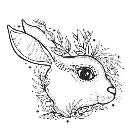 Sketch graphic illustration rabbit and butterfly with mystic and occult hand drawn symbols. Vector illustration. Old fashion tatoo.