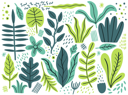 Leaves flat set. Tropical plants isolated on white background. Nature simple green floral. Minimal style fantasy. Vector illustration. Stock Illustratie