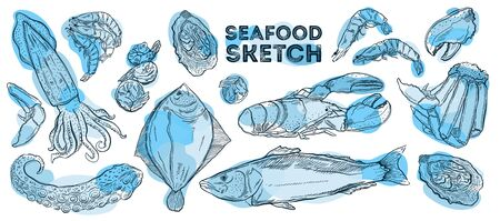 Seafood sketch set. Hand drawing cuisine. All elements are isolated in white background.Vector illustration.