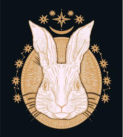 Rabbit animal magic drawing line.Gold line in black background.Vintage style tattoo.Vector illustration. Ilustrace