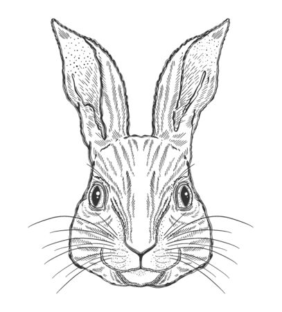 Rabbit animal magic drawing line.Black line in white background.Vintage style tattoo..Vector illustration.