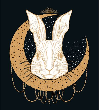 Rabbit animal magic drawing line.Gold line in black background.Vintage style tattoo.Vector illustration. Reklamní fotografie