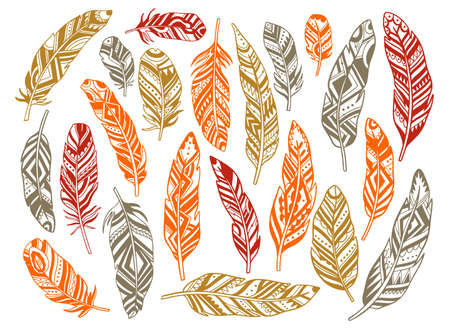 Set feather abstract isolated decoration. Boho rustic style. Vector illustration. Vector Illustratie