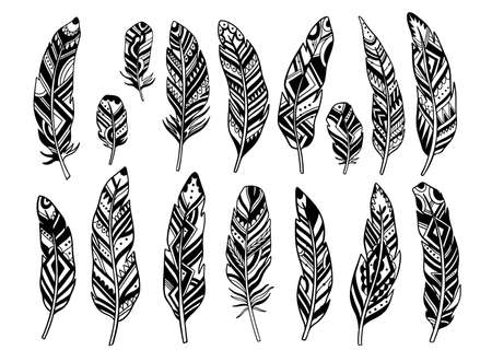 Set feather abstract isolated decoration. Boho rustic style.