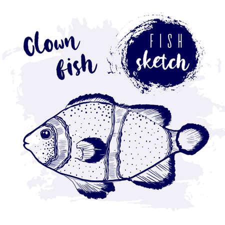 Vintage clown fish marine sketch.Retro line style.Hand drawn underwater.