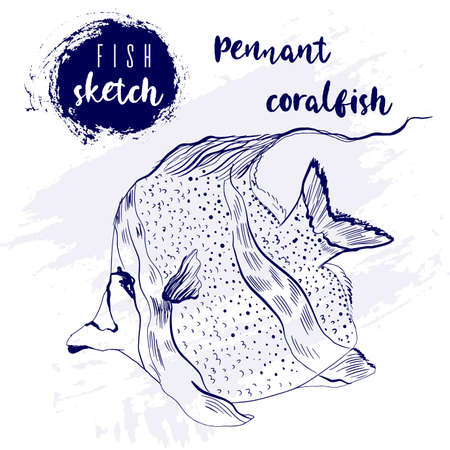 Vintage pennant coralfish marine sketch.Retro line style.Hand drawn underwater. Illustration