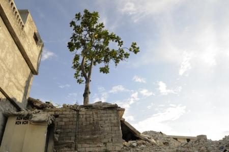 port au prince: Hait� tras el terremoto