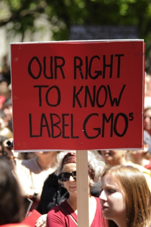 TORONTO-MAY 25: A protestor with a sign asking to put a label on foods which are genetically modified during a rally against GMO giant Monsanto on May 25, 2013 in Toronto, Canada. Editorial