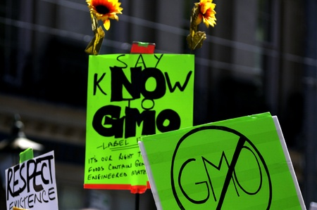 clarify: TORONTO-MAY 25: A banner asking to put label on foods to clarify if it has Genetically modified material during a rally against GMO giant Monsanto on May 25, 2013 in Toronto, Canada.