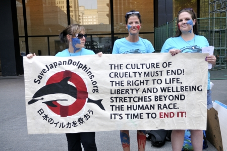 TORONTO-AUGUST 31: Protesters holding a sign to denounce the killing of dolphins during a rally to protest the start of the annual dolphin hunt at Taiji,Japan on August 31,2012 in Toronto,Canada.