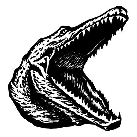 widely: hand drawn vector sketch silhouette linear illustration of alligator crocodile widely slack jaws Illustration
