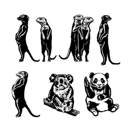 hand drawn vector sketch silhouette linear illustration of collection of animals