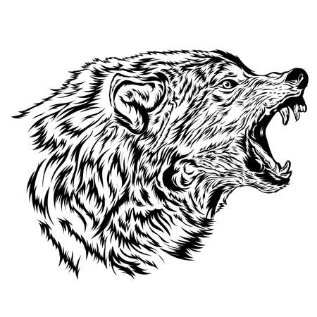 Angry Wolf face vector, perfect for tshirt design, zoo logo, merchandise also school team mascot logo