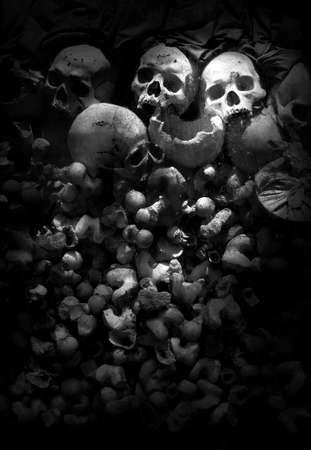 czaszka Zdjęcie Seryjne