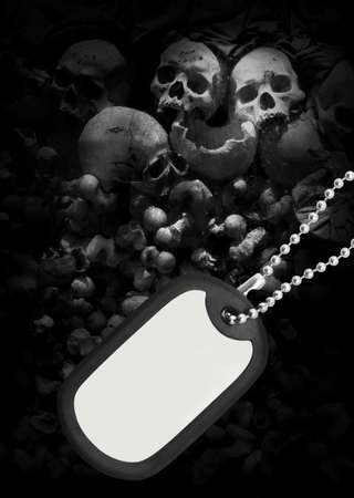 Skull and dog tag photo