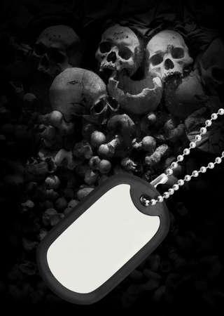 Skull and dog tag photo