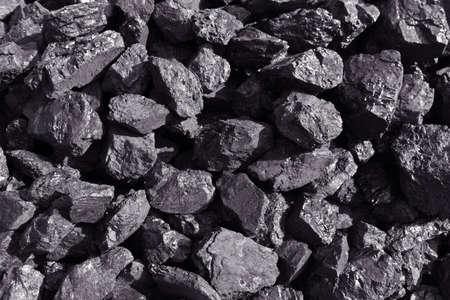 coal: coal