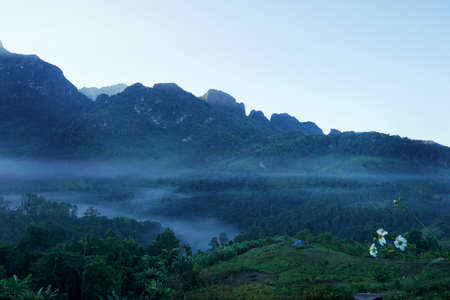 Fog in the morning at Doi Chiang Dao, Thailand, abundance evergreen forest and foggy, Space for text in template, Travel and Ecological concept Фото со стока