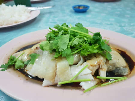 Chinese food style, boiled chicken meat topped with coriander in pink plate on table, Chinese new year food